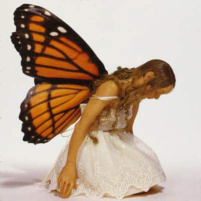 Polymer-Clay-books-square-fairy-image
