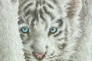 Cross stitch projects and patterns