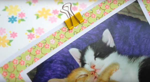 picture-making-washi-tape-