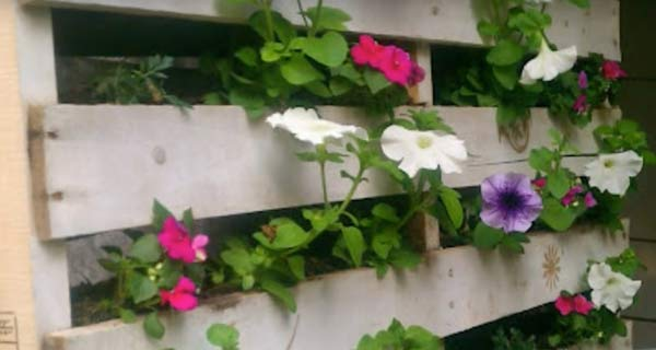 pallets-recycle-into-vertical-wall-planters